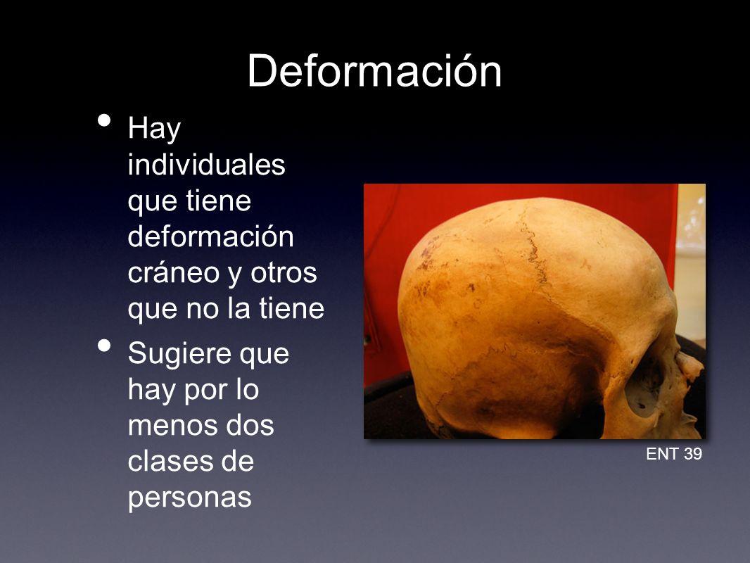 Deformación Hay individuales que tiene deformación cráneo y otros que no la tiene Sugiere que hay por lo menos dos clases de personas ENT 39