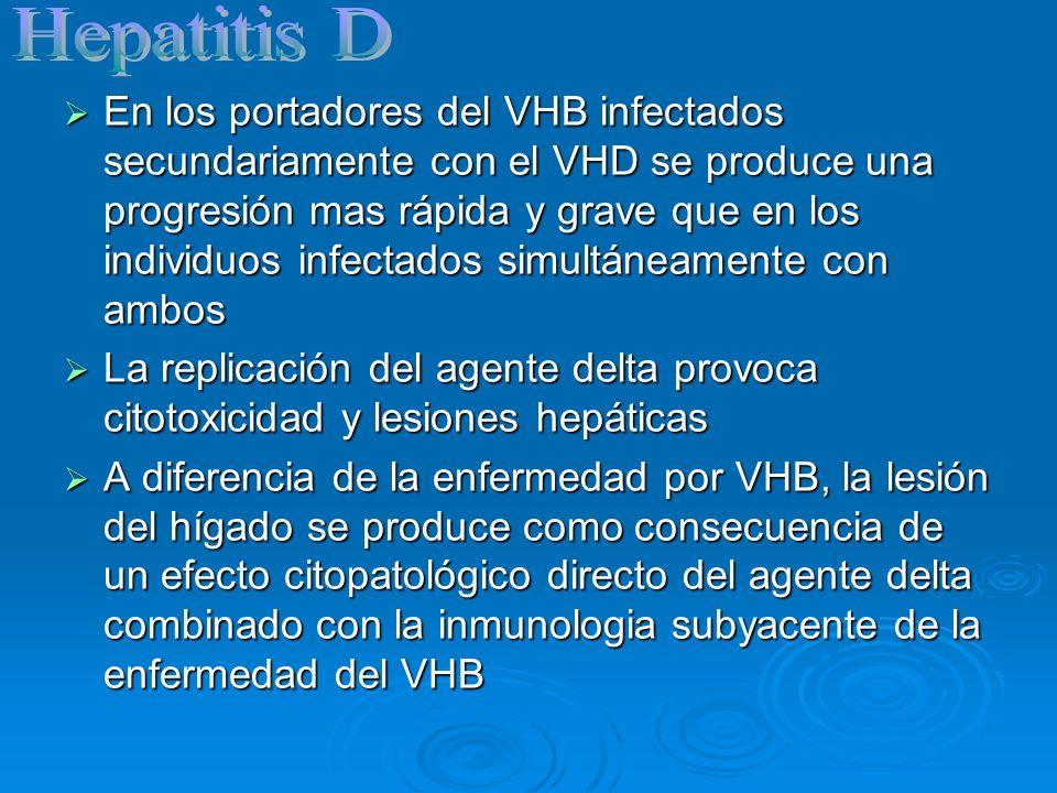 En los portadores del VHB infectados secundariamente con el VHD se produce una progresión mas rápida y grave que en los individuos infectados simultán