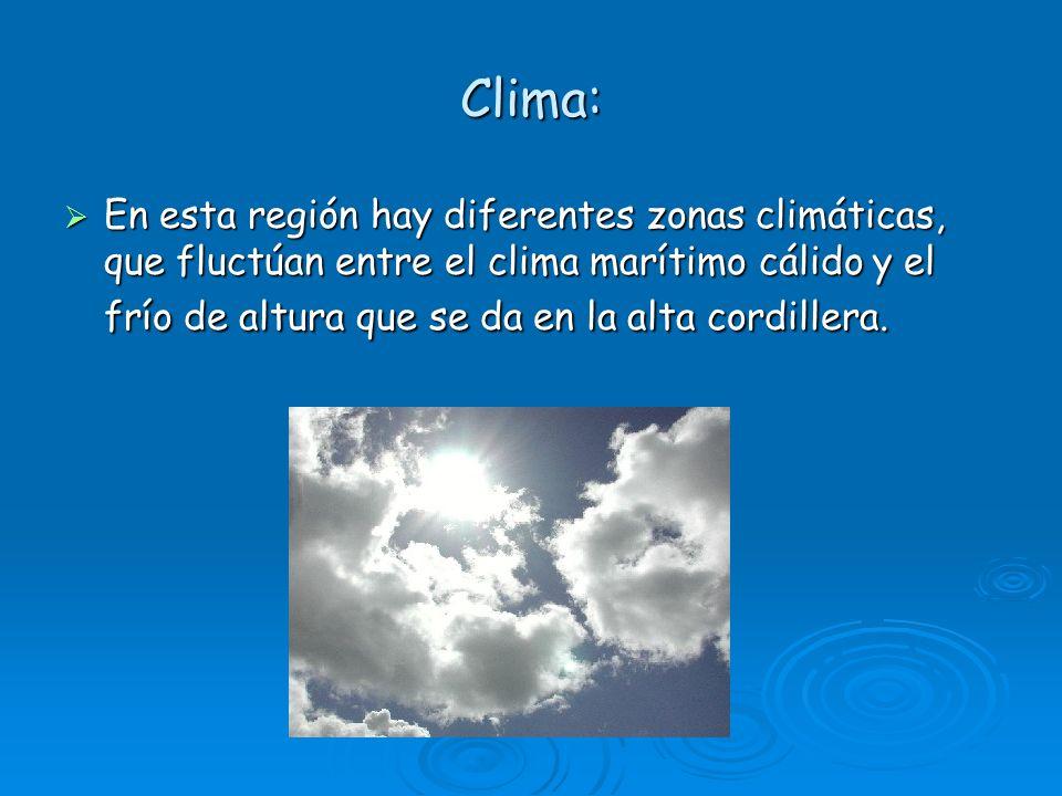 Clima: En esta región hay diferentes zonas climáticas, que fluctúan entre el clima marítimo cálido y el frío de altura que se da en la alta cordillera