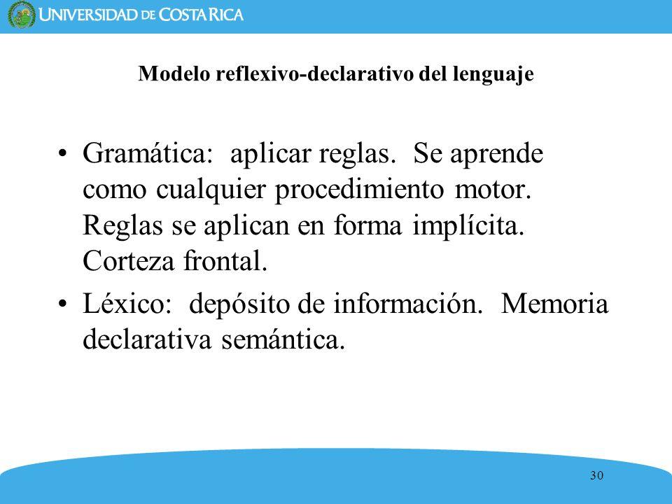 30 Modelo reflexivo-declarativo del lenguaje Gramática: aplicar reglas. Se aprende como cualquier procedimiento motor. Reglas se aplican en forma impl
