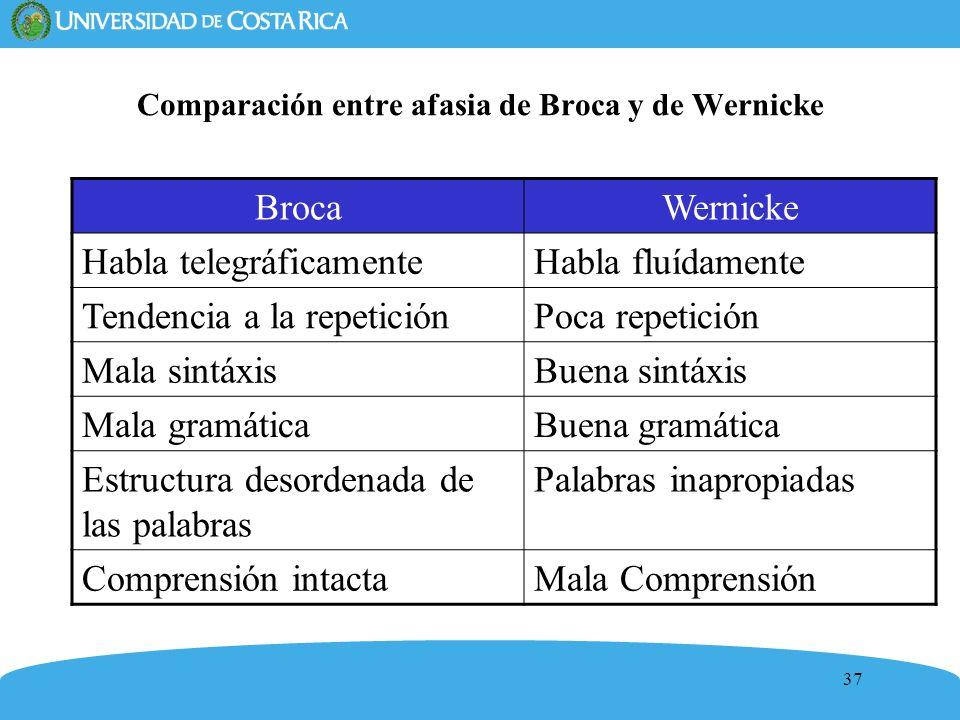 37 Comparación entre afasia de Broca y de Wernicke BrocaWernicke Habla telegráficamenteHabla fluídamente Tendencia a la repeticiónPoca repetición Mala