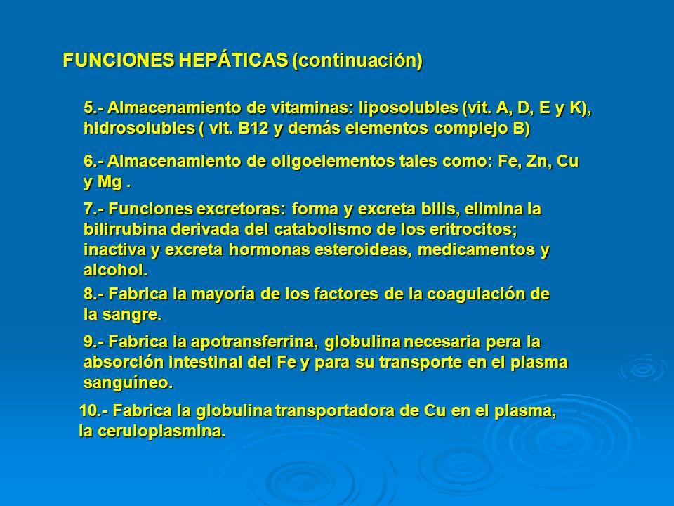 FUNCIONES HEPÁTICAS (continuación) 5.- Almacenamiento de vitaminas: liposolubles (vit. A, D, E y K), hidrosolubles ( vit. B12 y demás elementos comple