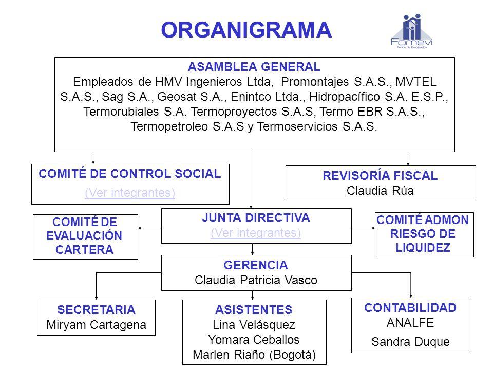 ORGANIGRAMA ASAMBLEA GENERAL Empleados de HMV Ingenieros Ltda, Promontajes S.A.S., MVTEL S.A.S., Sag S.A., Geosat S.A., Enintco Ltda., Hidropacífico S
