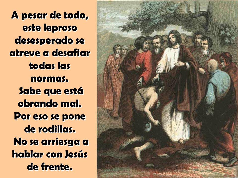 Ellos nos recuerdan que en el corazón de Dios caben todos.