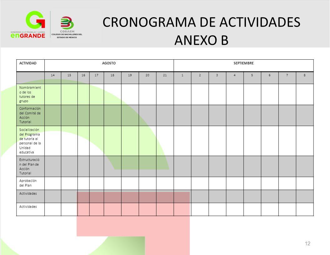 CRONOGRAMA DE ACTIVIDADES ANEXO B 12 ACTIVIDADAGOSTOSEPTIEMBRE 141516171819202112345678 Nombramient o de los tutores de grupo Conformación del Comité