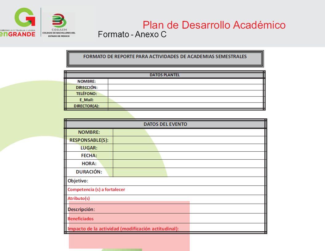 14 Formato - Anexo C