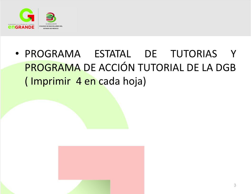 PROGRAMA ESTATAL DE TUTORIAS Y PROGRAMA DE ACCIÓN TUTORIAL DE LA DGB ( Imprimir 4 en cada hoja) 3