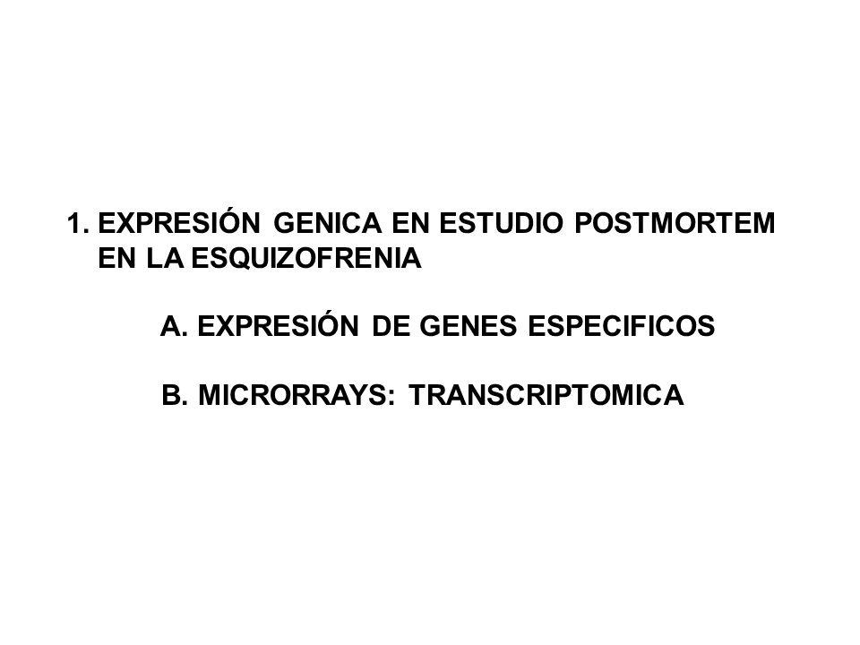 1. EXPRESIÓN GENICA EN ESTUDIO POSTMORTEM EN LA ESQUIZOFRENIA A. EXPRESIÓN DE GENES ESPECIFICOS B. MICRORRAYS: TRANSCRIPTOMICA