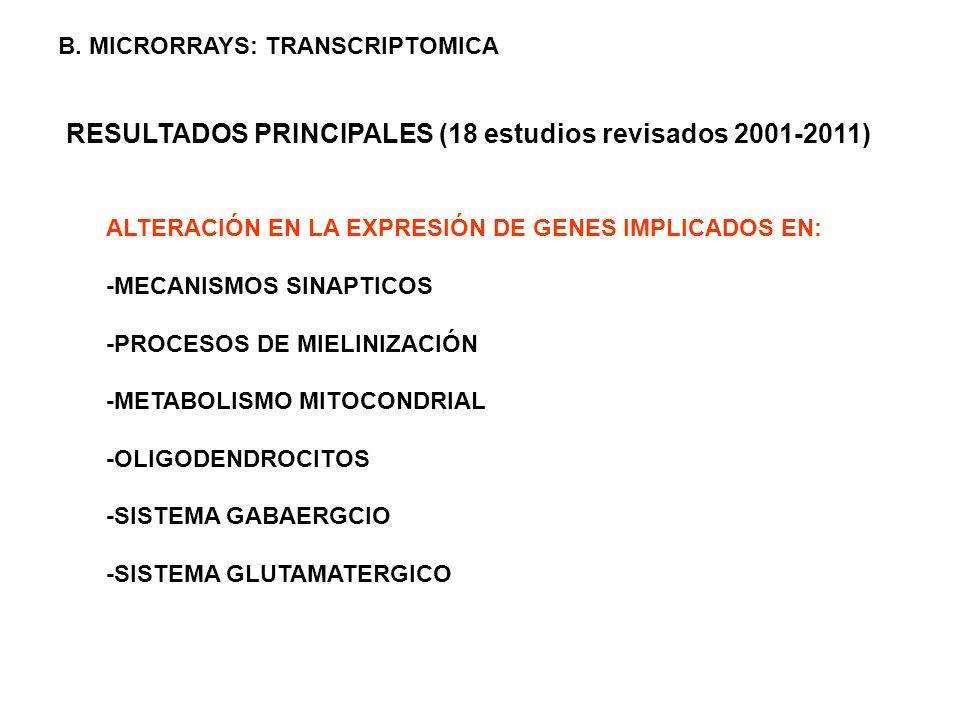 RESULTADOS PRINCIPALES (18 estudios revisados 2001-2011) ALTERACIÓN EN LA EXPRESIÓN DE GENES IMPLICADOS EN: -MECANISMOS SINAPTICOS -PROCESOS DE MIELIN