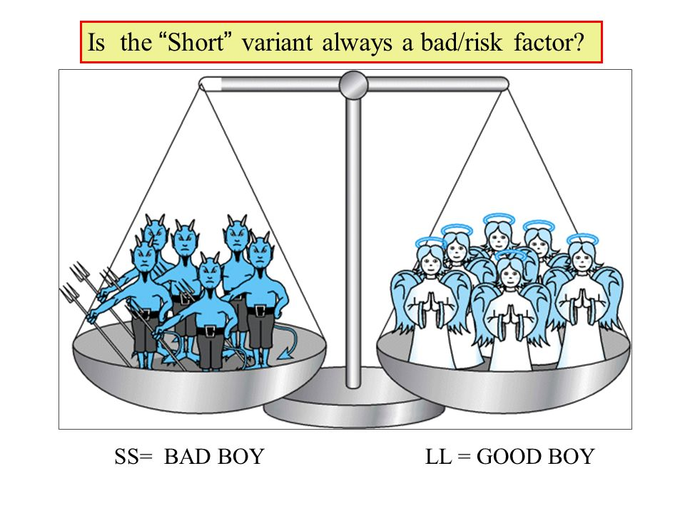 SS= BAD BOY LL = GOOD BOY Is the Short variant always a bad/risk factor?