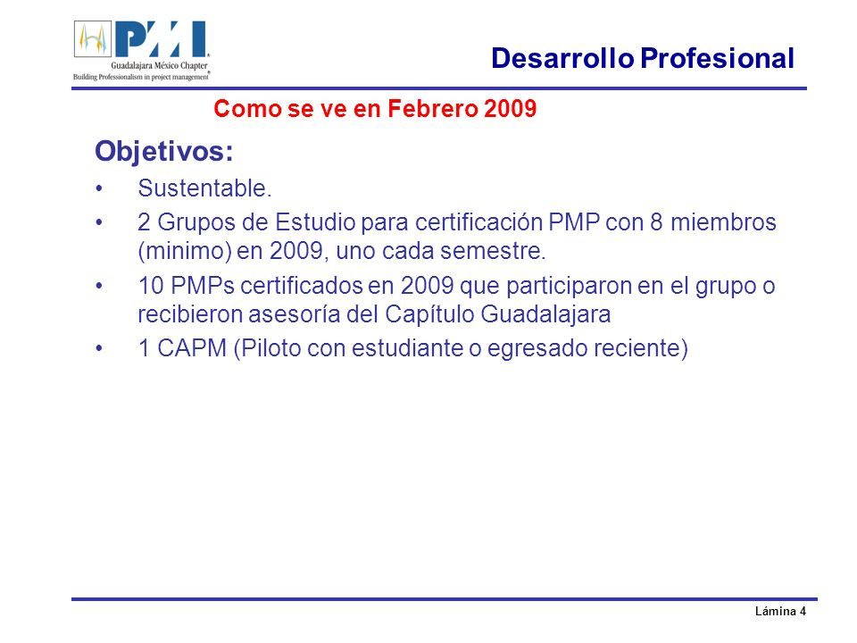 Lámina 4 Desarrollo Profesional Objetivos: Sustentable.