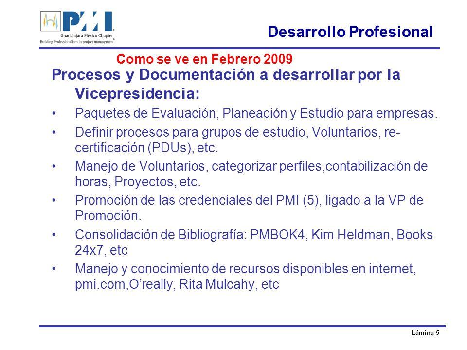 Lámina 5 Desarrollo Profesional Procesos y Documentación a desarrollar por la Vicepresidencia: Paquetes de Evaluación, Planeación y Estudio para empresas.