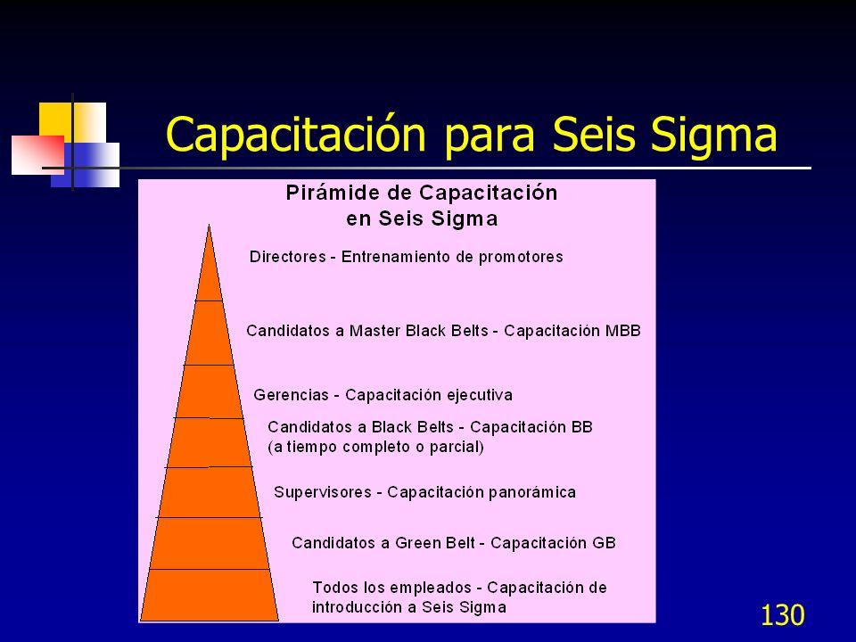 130 Capacitación para Seis Sigma