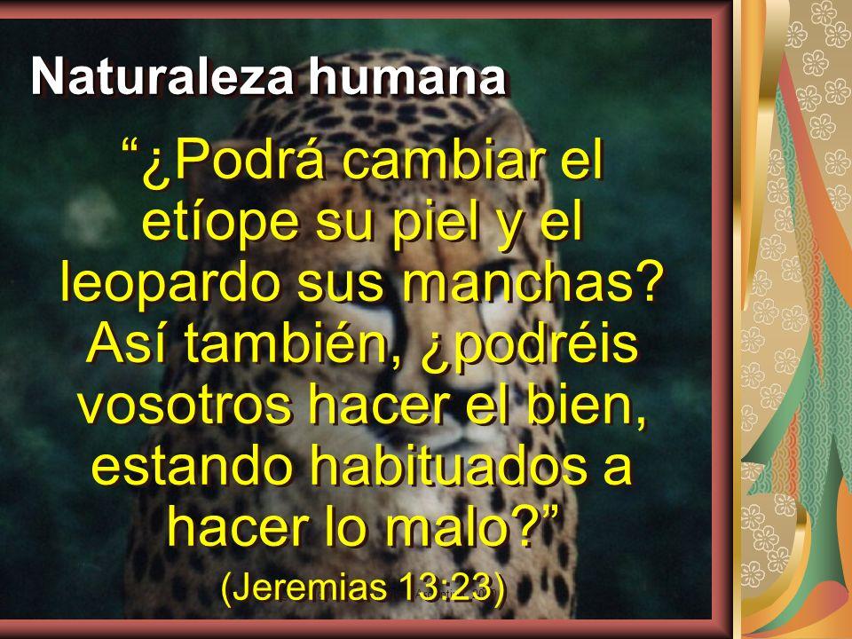 Copyright: Miguel Angel Núñez. Argentina. 2000 El amor como don Mas el fruto del Espíritu es Amor Gálatas 5:22 Mas el fruto del Espíritu es Amor Gálat
