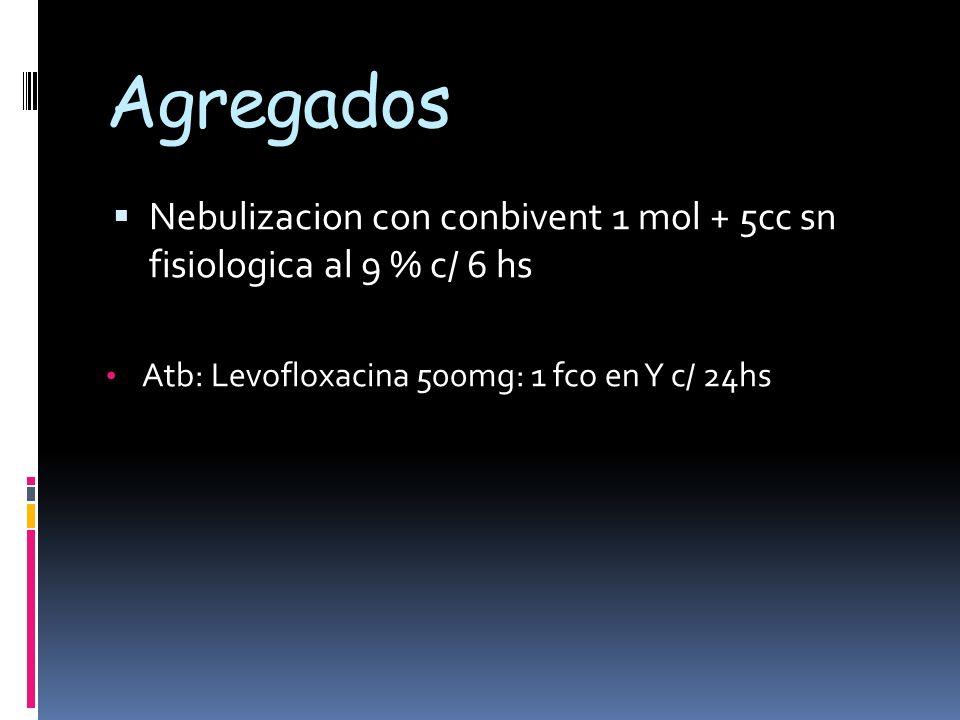Agregados Nebulizacion con conbivent 1 mol + 5cc sn fisiologica al 9 % c/ 6 hs Atb: Levofloxacina 500mg: 1 fco en Y c/ 24hs