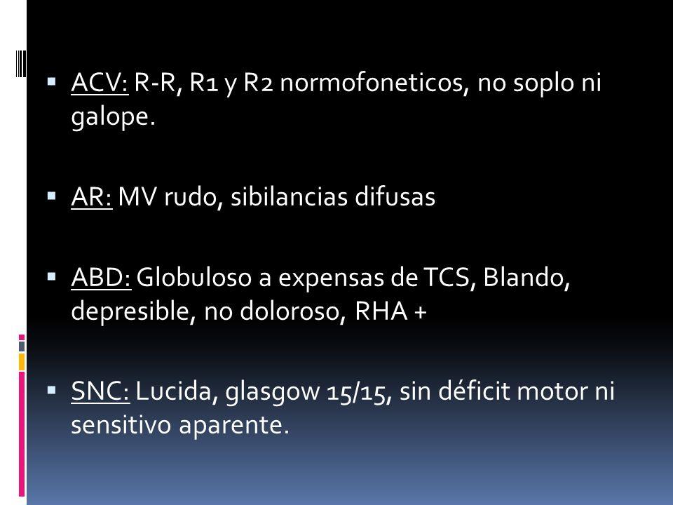 ACV: R-R, R1 y R2 normofoneticos, no soplo ni galope. AR: MV rudo, sibilancias difusas ABD: Globuloso a expensas de TCS, Blando, depresible, no doloro
