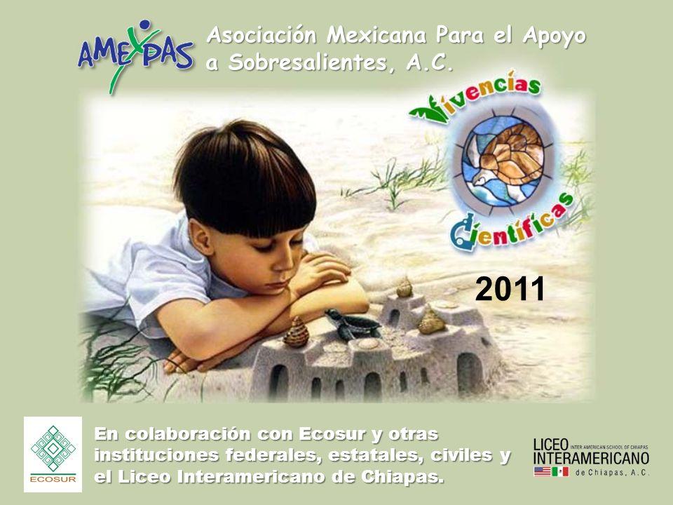 Asociación Mexicana Para el Apoyo a Sobresalientes, A.C. En colaboración con Ecosur y otras instituciones federales, estatales, civiles y el Liceo Int