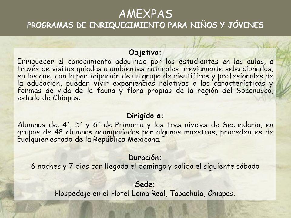 NombreSíntesis curricular Alfredo Castillo Vera Licenciatura en la Universidad Autónoma de Chiapas (1988).