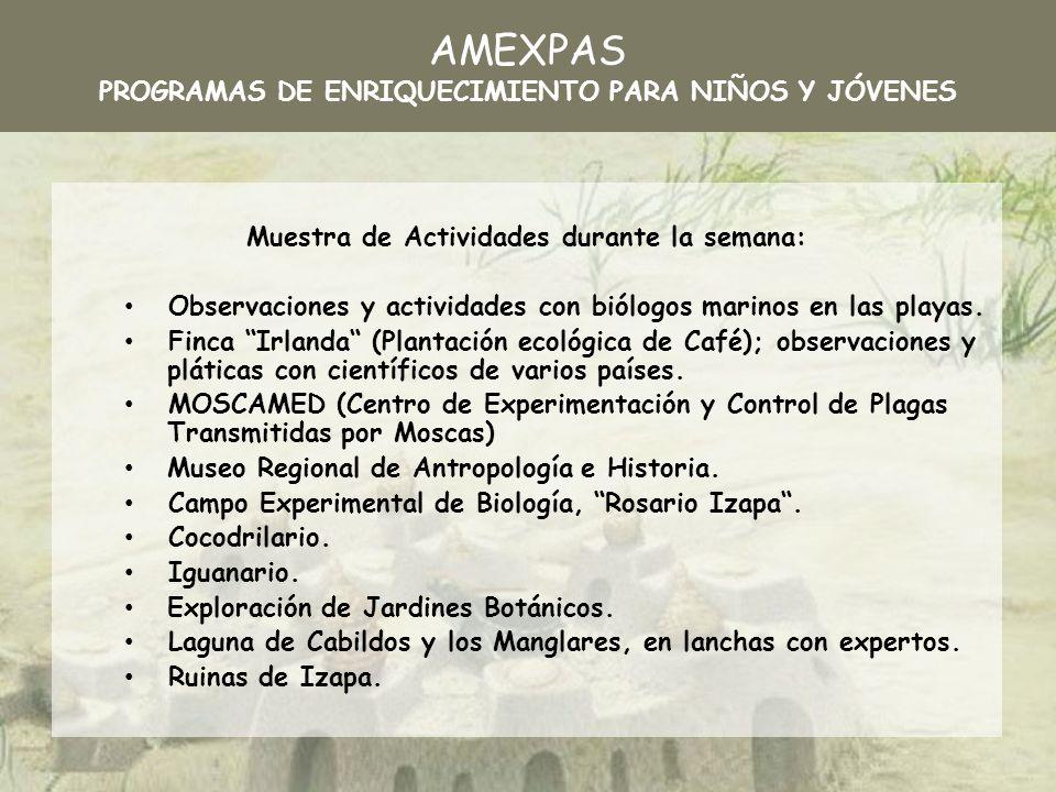 Laboratorios de Investigación en ECOSUR.