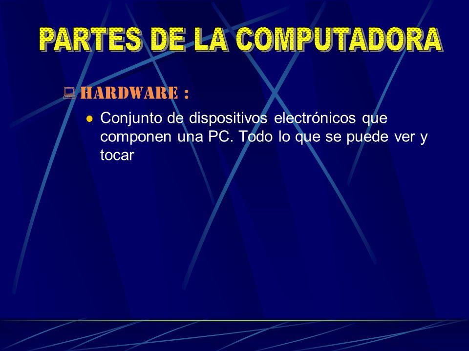 HARDWARE : Conjunto de dispositivos electrónicos que componen una PC. Todo lo que se puede ver y tocar