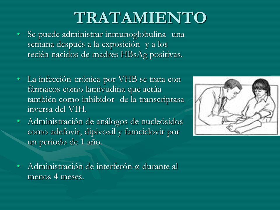 TRATAMIENTO Se puede administrar inmunoglobulina una semana después a la exposición y a los recién nacidos de madres HBsAg positivas.Se puede administ