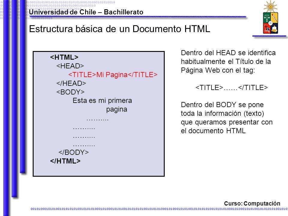 Curso: Computación Estructura básica de un Documento HTML Dentro del HEAD se identifica habitualmente el Título de la Página Web con el tag: …… Dentro