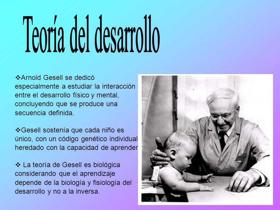 Arnold Gesell se dedicó especialmente a estudiar la interacción entre el desarrollo físico y mental, concluyendo que se produce una secuencia definida.