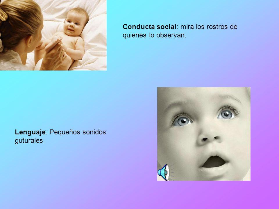 Conducta social: mira los rostros de quienes lo observan. Lenguaje: Pequeños sonidos guturales