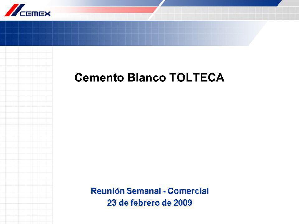 Cemento Blanco TOLTECA Reunión Semanal - Comercial 23 de febrero de 2009