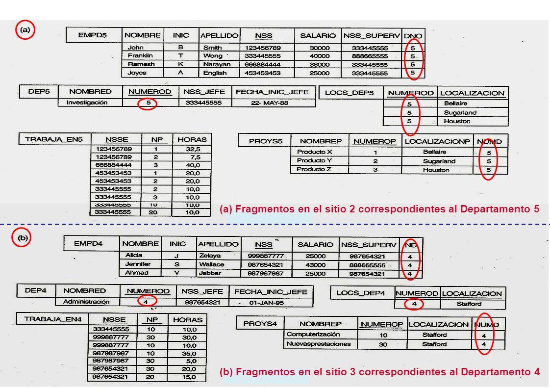 (a) Fragmentos en el sitio 2 correspondientes al Departamento 5 (b) Fragmentos en el sitio 3 correspondientes al Departamento 4