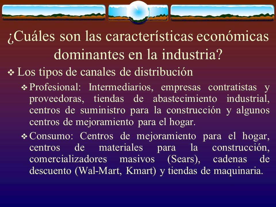 ¿Cuáles son las características económicas dominantes en la industria? Los tipos de canales de distribución Profesional: Intermediarios, empresas cont