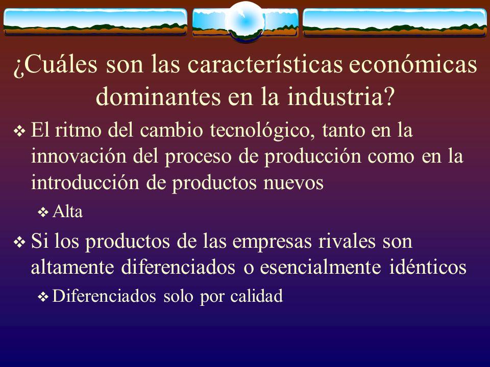 ¿Cuáles son las características económicas dominantes en la industria? El ritmo del cambio tecnológico, tanto en la innovación del proceso de producci