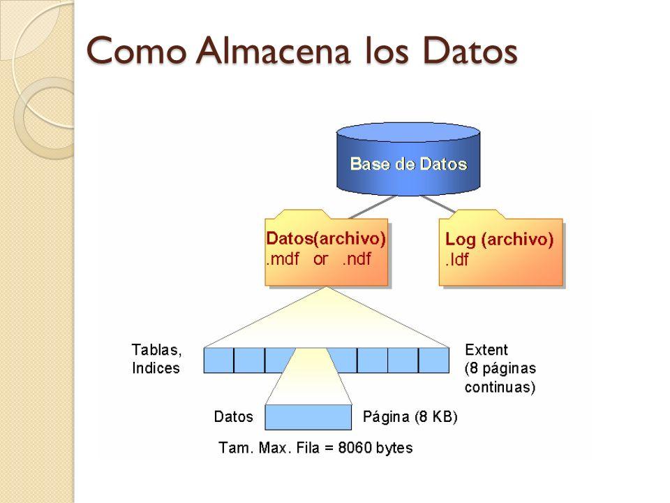 Como Almacena los Datos