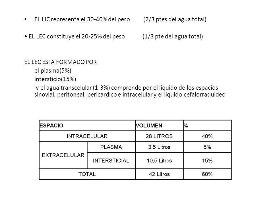 EL LIC representa el 30-40% del peso (2/3 ptes del agua total) EL LEC constituye el 20-25% del peso (1/3 pte del agua total) EL LEC ESTA FORMADO POR e