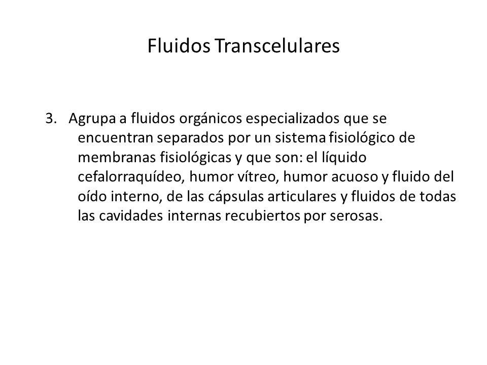 Fluidos Transcelulares 3. Agrupa a fluidos orgánicos especializados que se encuentran separados por un sistema fisiológico de membranas fisiológicas y