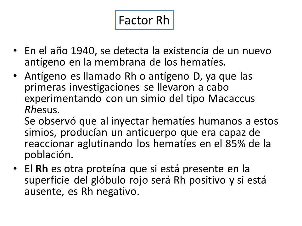 En el año 1940, se detecta la existencia de un nuevo antígeno en la membrana de los hematíes. Antígeno es llamado Rh o antígeno D, ya que las primeras
