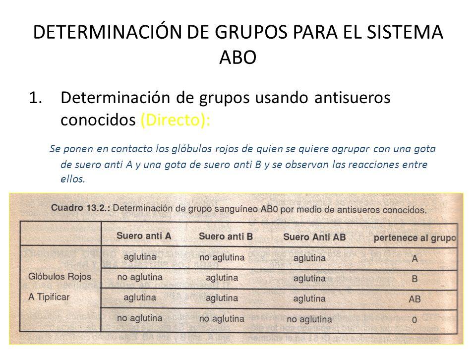DETERMINACIÓN DE GRUPOS PARA EL SISTEMA ABO 1.Determinación de grupos usando antisueros conocidos (Directo): Se ponen en contacto los glóbulos rojos d