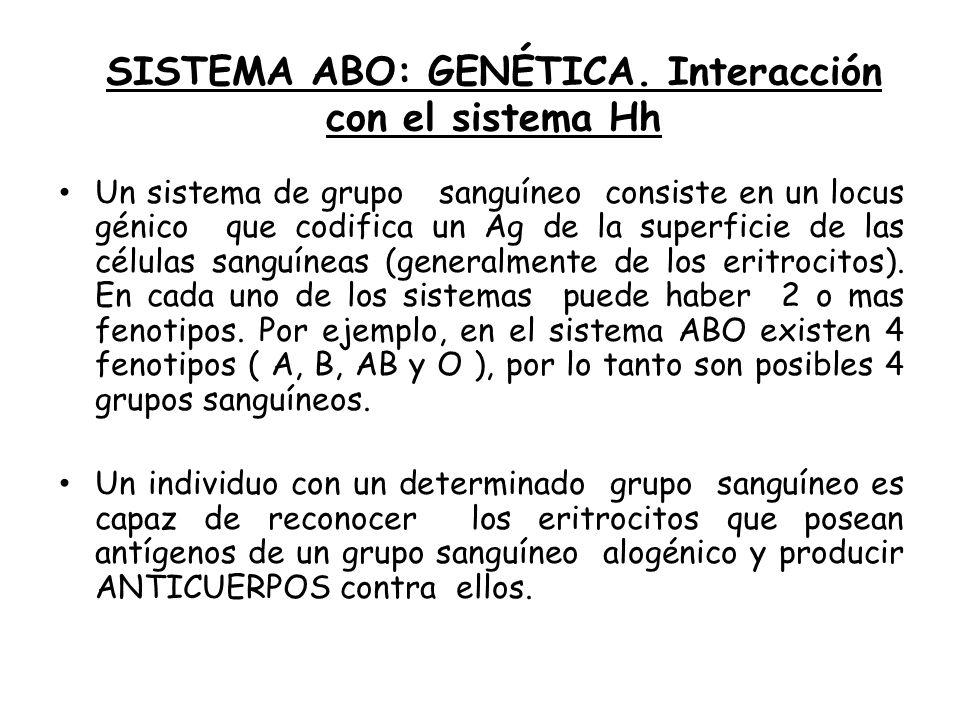 SISTEMA ABO: GENÉTICA. Interacción con el sistema Hh Un sistema de grupo sanguíneo consiste en un locus génico que codifica un Ag de la superficie de
