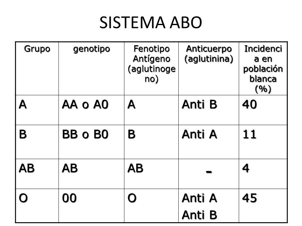 SISTEMA ABO Grupogenotipo Fenotipo Antígeno (aglutinoge no) Anticuerpo (aglutinina) Incidenci a en población blanca (%) A AA o A0 A Anti B 40 B BB o B