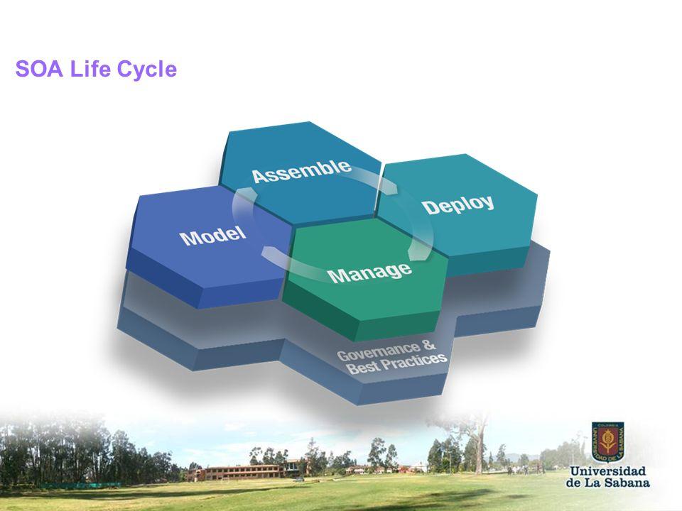 SOA Life Cycle