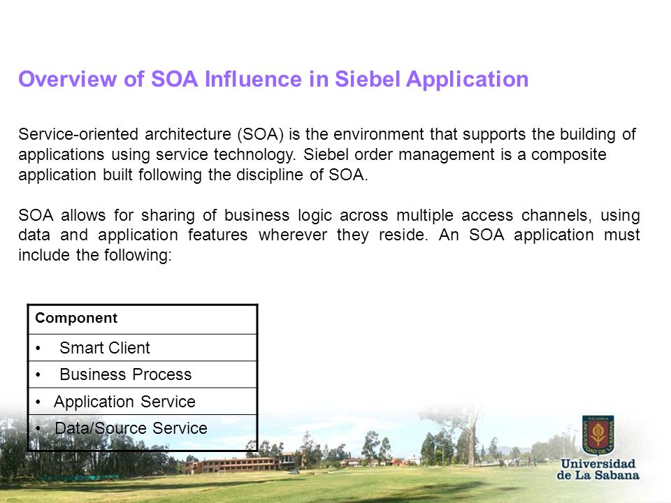 Overview of SOA Influence in Siebel Application Service-oriented architecture (SOA) is the environment that supports the building of applications usin