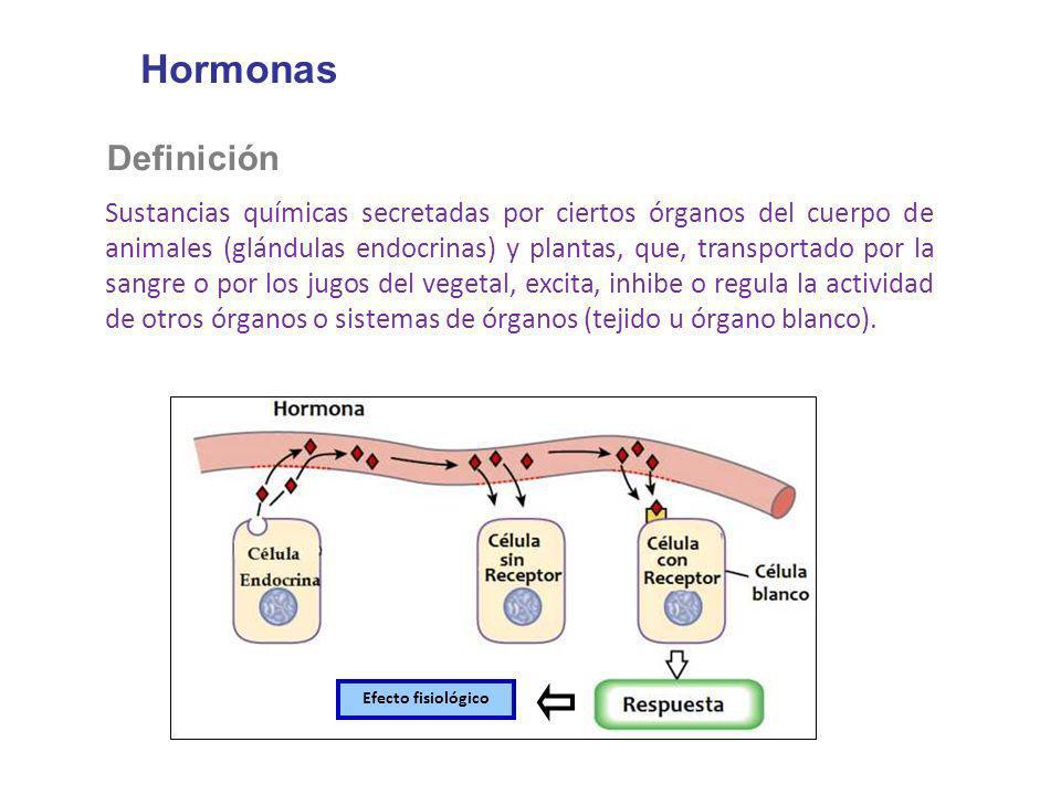 Hormonas Definición Sustancias químicas secretadas por ciertos órganos del cuerpo de animales (glándulas endocrinas) y plantas, que, transportado por