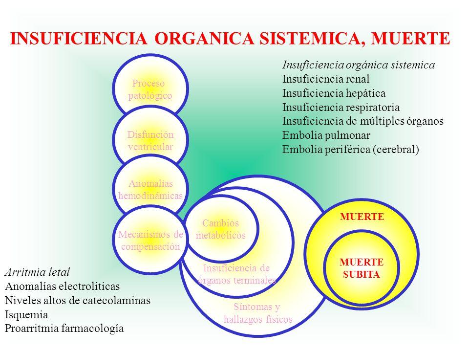 Síntomas y hallazgos físicos Arritmia letal Anomalías electroliticas Niveles altos de catecolaminas Isquemia Proarritmia farmacología Insuficiencia or