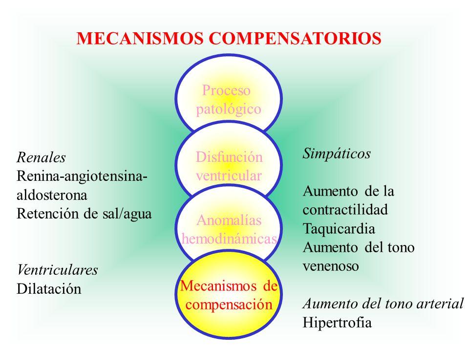 ACCIONES DE ENFERMERIA ACCIONES DE ENFERMERIA 6.