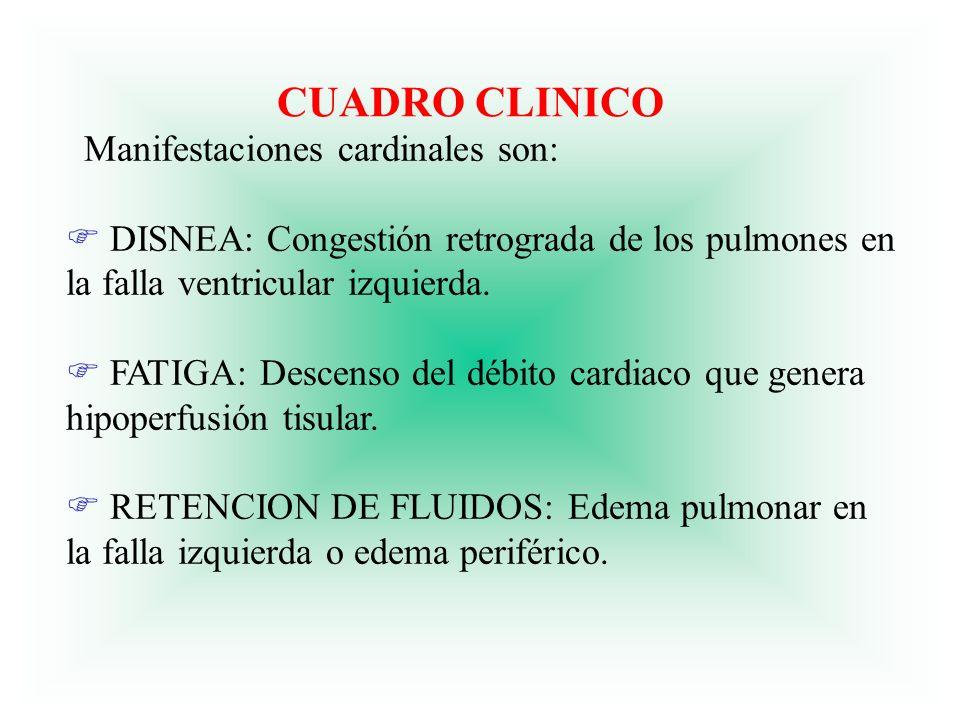 CLASE FUNCIONAL DE INSUFICIENCIA CARDIACA CLASE I: Actividad sin limitaciones.
