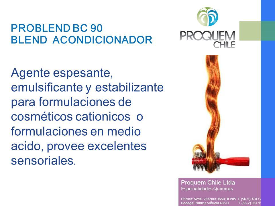 Proquem Chile Ltda Especialidades Quimicas Oficina: Avda.