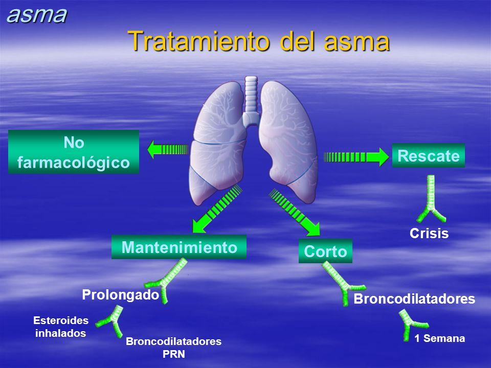 No farmacológico Rescate Mantenimiento Corto Crisis Broncodilatadores 1 Semana Prolongado Esteroides inhalados Tratamiento del asma Broncodilatadores