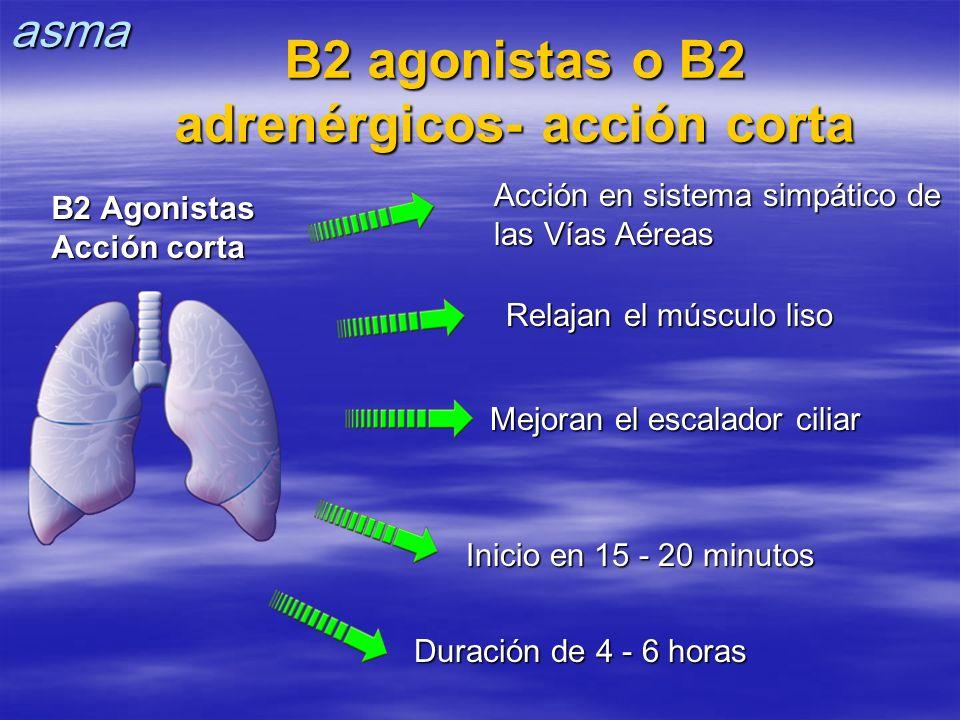 B2 agonistas o B2 adrenérgicos- acción corta Relajan el músculo liso Mejoran el escalador ciliar Inicio en 15 - 20 minutos Duración de 4 - 6 horas Acc