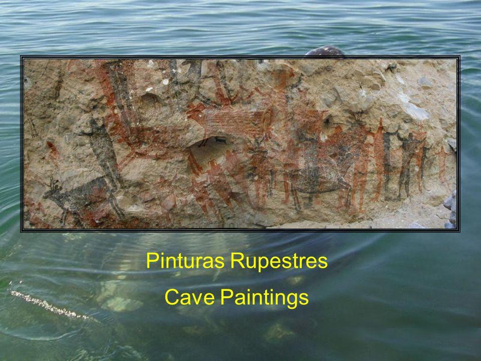 Pinturas Rupestres Cave Paintings