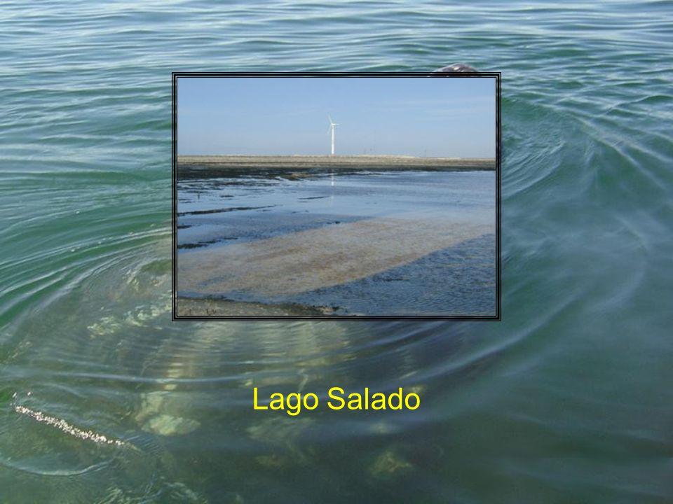 Lago Salado